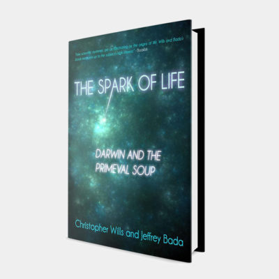 The Spark of Life – Book Cover Design